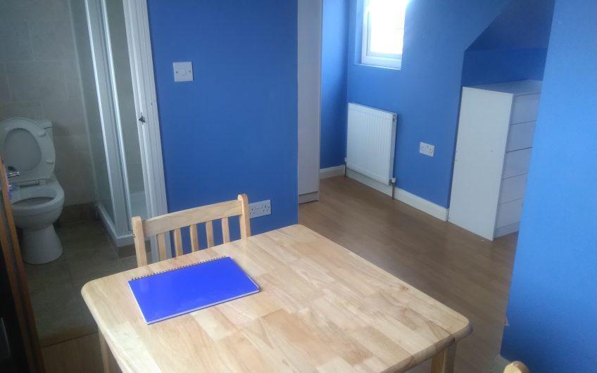Studio flat in Tiverton Road, N18